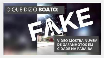 É #FAKE que vídeo mostre nuvem de gafanhotos em cidade da Paraíba