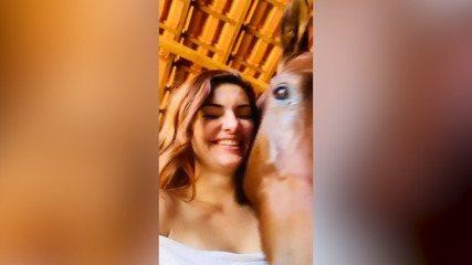 Mayana Neiva faz carinho em cavalo e mostra do amor por animais