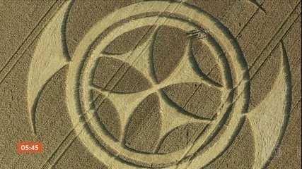 Símbolo gigantesco aparece em plantação de trigo no norte da França