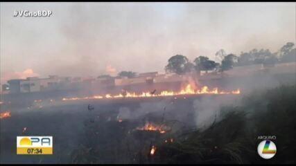 Decreto federal proíbe uso de fogo na Amazônia por 120 dias