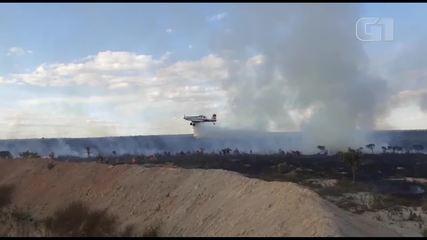 Bombeiros do DF usam aeronave para combater incêndio no Cerrado
