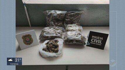Polícia apreende maconha avaliada em pelo menos R$ 50 mil em Pratápolis