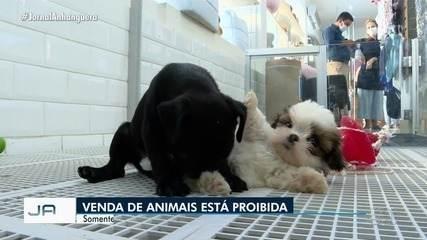 Lei pode proibir a venda de animais em Goiânia