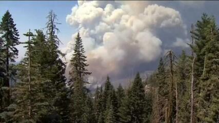 Operação resgata dezenas de pessoas de incêndio na Califórnia