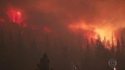 Chá de revelação provoca incêndio fora de controle nos EUA
