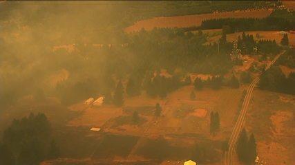 Pontual: 'Califórnia está devastada por incêndios florestais'