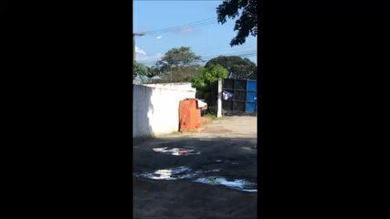 Torcedores do CSA quebram parte do portão do Nelsão durante protesto