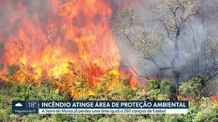 Incêndio atinge área de proteção ambiental na região de Várzea Paulista, interior de SP