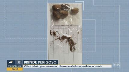 Cidasc alerta para riscos com recebimento de sementes clandestinas