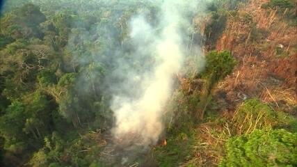Países europeus cobram Brasil por medidas para conter o desmatamento na Amazônia