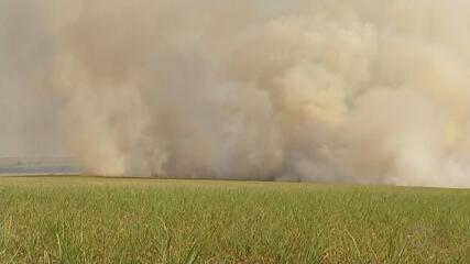 Fumaça provocada por queimadas interdita rodovias no interior de SP