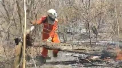 Incêndio atinge área de vegetação na cidade de Barra, no oeste da Bahia