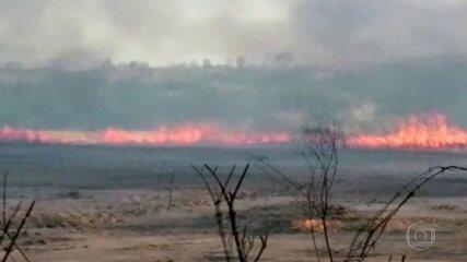 Chuva ameniza os efeitos dos incêndios no Pantanal e no Cerrado de Mato Grosso do Sul