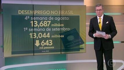 Desemprego recua na 1ª semana de setembro e atinge 13 milhões de brasileiros, segundo IBGE
