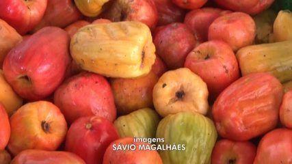 Retomada da economia aquece o mercado da cajucultura no Sul do Piauí