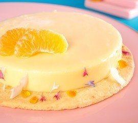 Panna Cotta: gelatina cremosa de tangerina
