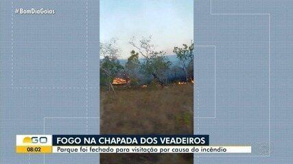 Voluntários e brigadistas trabalham para apagar fogo na Chapada dos Veadeiros