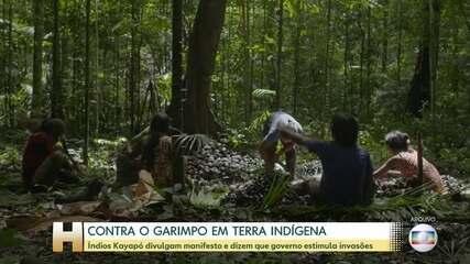 Kayapós divulgam manifesto contra garimpo em terra indígena