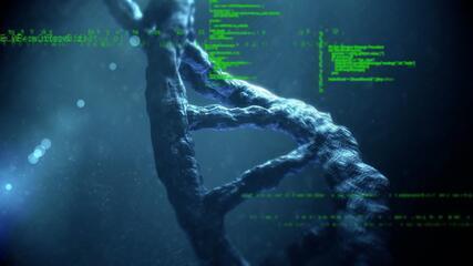 Tecnologia desenvolvida em SC busca combater doenças hereditárias