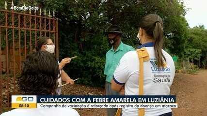Campanha de vacinação da febre amarela é reforçada após registro da doença em macacos