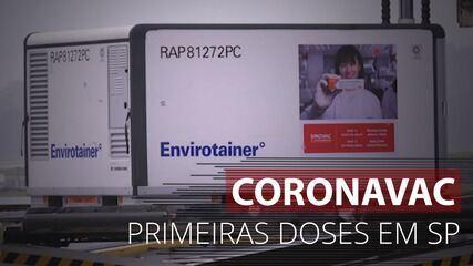 Lote com as primeiras 120 mil doses da vacina Coronavac chega a SP