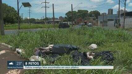 Fetos são encontrados dentro de saco de lixo plástico em Ribeirão Preto, SP
