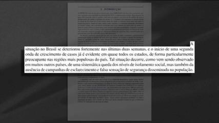Brasil já enfrenta segunda onda do coronavírus, afirmam cientistas em nota técnica