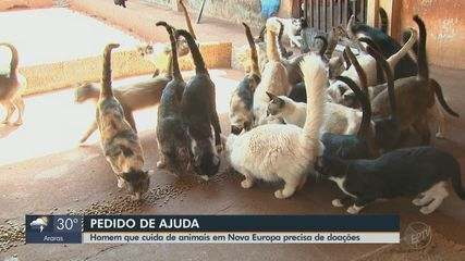 Homem que cuida de animais em Nova Europa precisa de doações