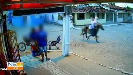Assaltantes usam cavalo para roubar mercadinho em Goiana