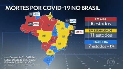 Brasil registra 495 mortes e 25.490 novos casos de Covid nas últimas 24 horas