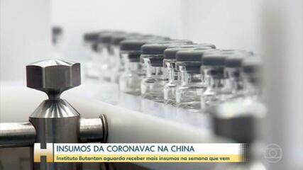 Vacinas do Butantan e da Fiocruz dependem de 'ingredientes' de longe para serem produzidas