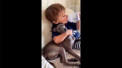 Vídeo de bebê de Anápolis crescendo ao lado de cachorrinho viraliza na web