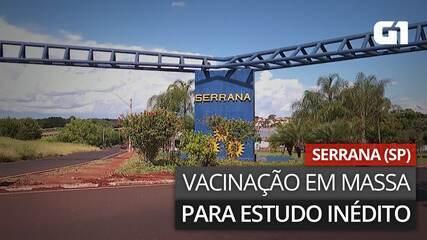 VÍDEO: Entenda a vacinação em massa em Serrana (SP)