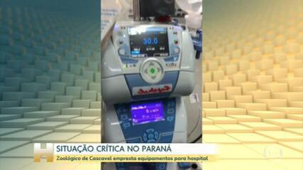 Situação crítica no Paraná: zoológico de Cascavel empresta equipamentos para hospital