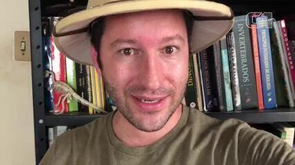 Biólogo Flávio Terassini explica o perigo de encontrar com a coral-verdadeira