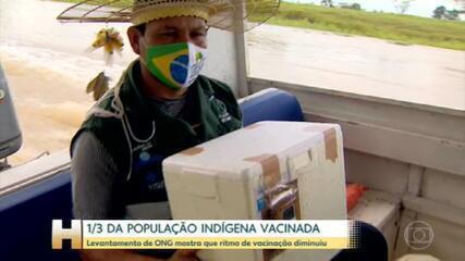 Ritmo de vacinação de indígenas desacelera no Brasil, segundo relatório de ONG