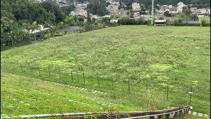 Imagens mostram o estádio Janguito Malucelli abandonado; local vai virar um condomínio