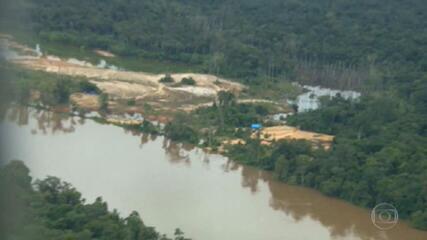Garimpeiros atacam comunidade Yanomami pelo 8º dia seguido, em Roraima