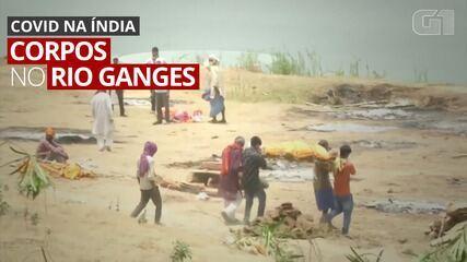 VÍDEO: Rio Ganges vira 'cemitério' com corpos flutuantes ou enterrados às margens