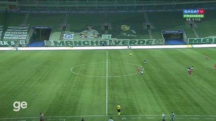 Palmeiras x CRB - Melhores Momentos