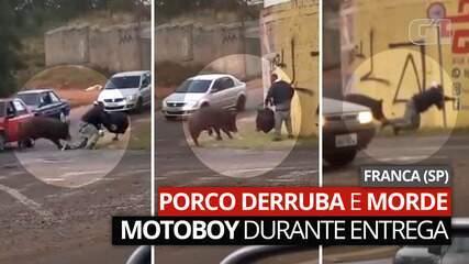 Veja o momento em que entregador é atacado por porco em Franca, SP