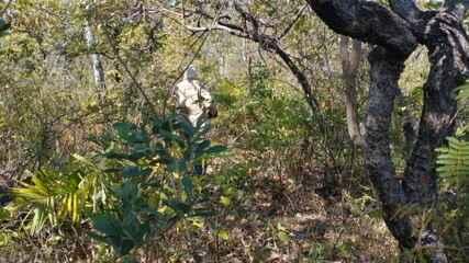 Idosa é encontrada em mata após 28 horas desaparecida em Formosa