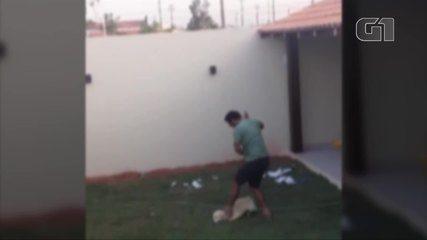 Vídeo flagra agressão contra cachorro no Pará