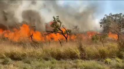 Incêndio na Chapada dos Veadeiros destrói mais de 18 mil hectares de cerrado