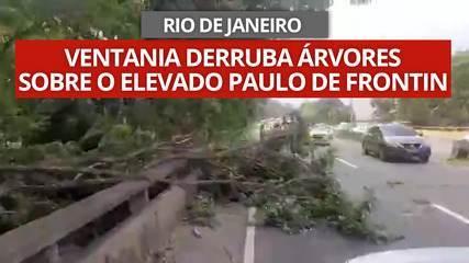 Ventania no Rio derruba árvores sobre o Elevado Paulo de Frontin