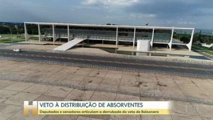 Congressistas articulam a derrubada do veto de Bolsonaro sobre à distribuição de absorventes
