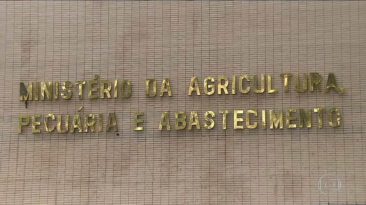 Governo inicia contra-ataque em defesa da carne brasileira