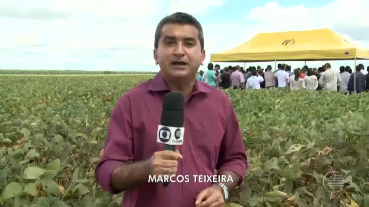 Fazenda realiza tour técnico e apresenta plantação de soja no Piauí
