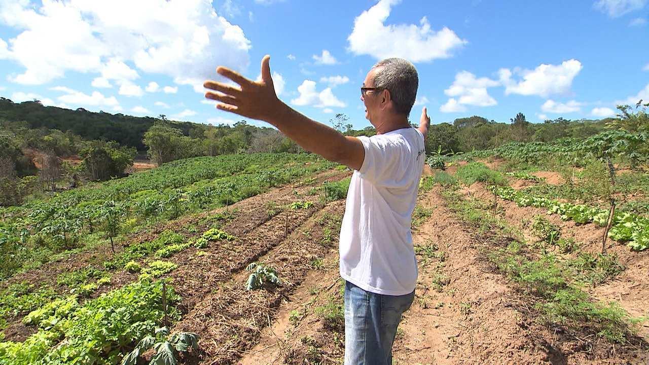 O Eco-Sítio enquanto modo de subversão no cultivo de alimentos orgânicos