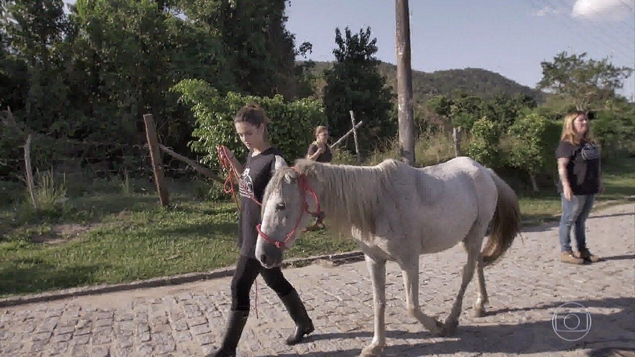 Giovanna Lancellotti acompanha resgate de uma égua